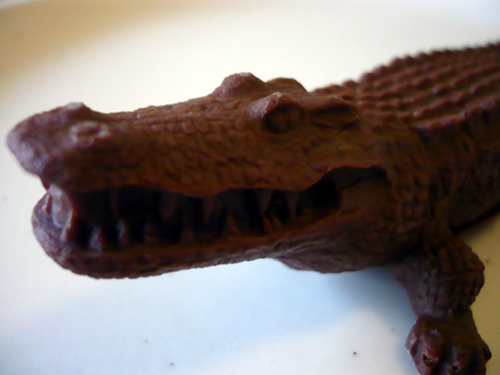 chocolate crocodile