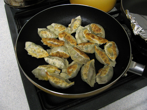 gyoza cooking chinese dumplings