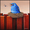 blue bird nest buildings surrealism